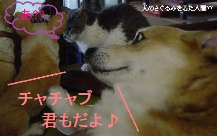 Shukushou5_2