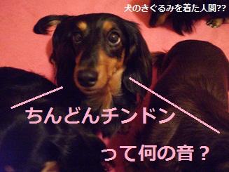 Shukushou1_2